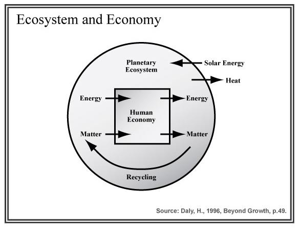 Ecosytem and economy