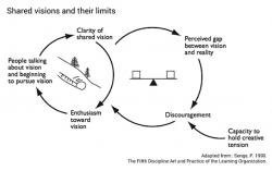 Peter Senge: Limits of shared vision