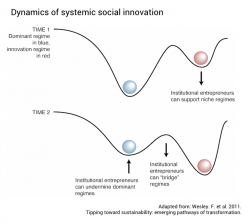 Dynamics of systemic social innovation