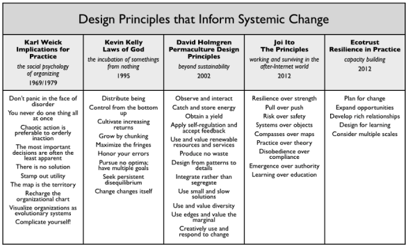 design principles for systemic change