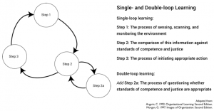 Single- and double-loop learning