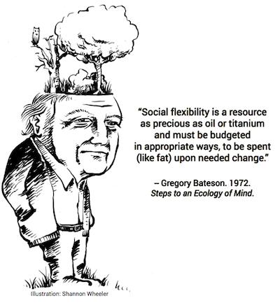 Bateson flexibility